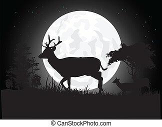 silhouette of deer - vector illustration of Beautiful Deer...
