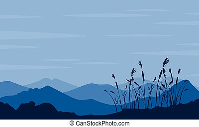 Silhouette of desert with grass landscape