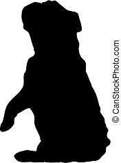 silhouette of dog begging - silhouette of english bulldog...