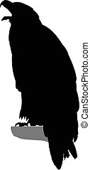 Silhouette of eagle.