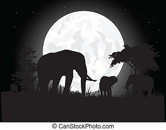 silhouette of elephant trip
