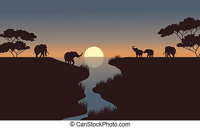 silhouette of elephants in the river