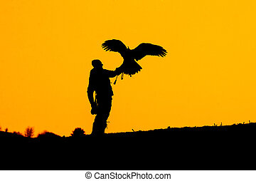 Silhouette of falconer with eagle. Hunting in the nature.