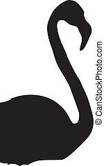 Flamingo - silhouette of Flamingo