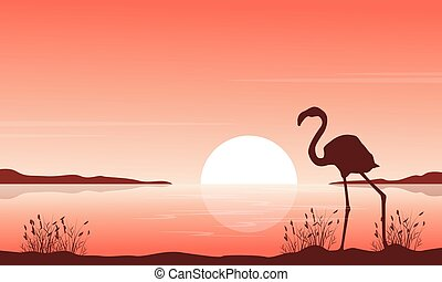 Silhouette of flamingo on lake scenery