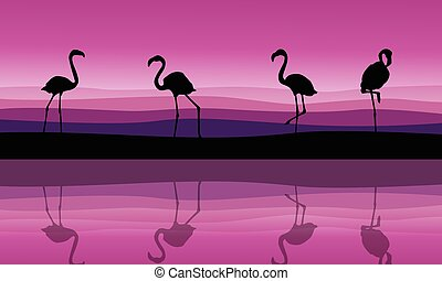 Silhouette of flamingo scenery with reflection