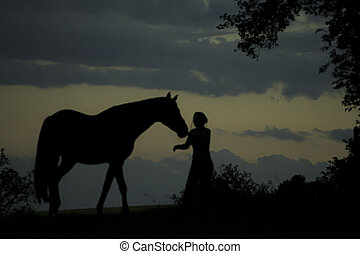 Silhouette of girl with horse