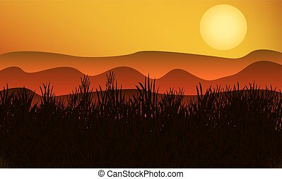 silhouette of grass on a background of mountains and the sunset