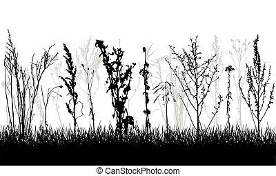 Silhouette of grassland. Different wild plants, weeds. Vector illustration.