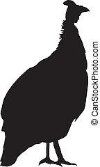 silhouette of Guinea fowl
