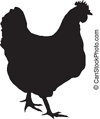 hen - silhouette of hen
