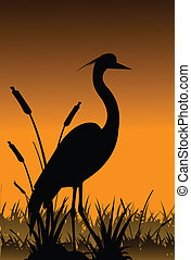 silhouette of heron with grass and lake