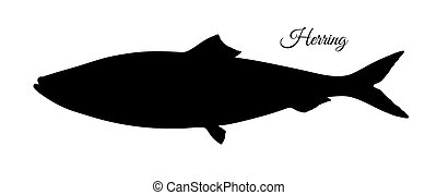 Silhouette of herring. Hand drawn vector illustration of...