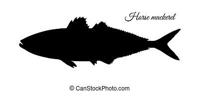 Silhouette of horse mackerel.