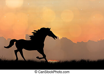 Silhouette of horse on sunset background