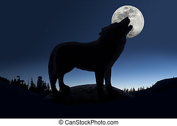 Silhouette of Howling Wolf - Silhouette of howling wolf ...