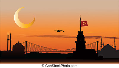 Silhouette of Istanbul at sunset - Vector silhouette of...