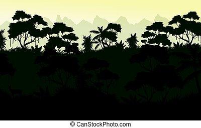 Silhouette of jungle rain forest scenery