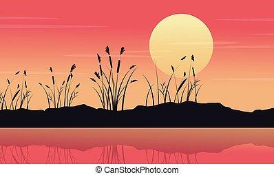 Silhouette of lake with coarse grass landscape