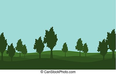 Silhouette of lined tree on the hill