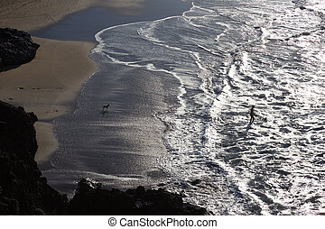 Silhouette of man and dog having fun on seaside.