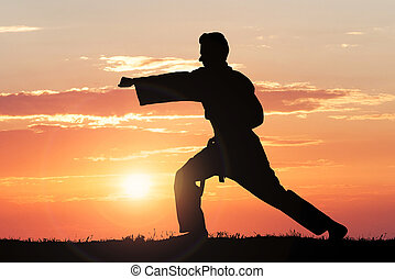Silhouette Of Man Practicing Karate
