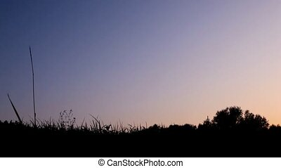 silhouette of man walks with bicycle against sky