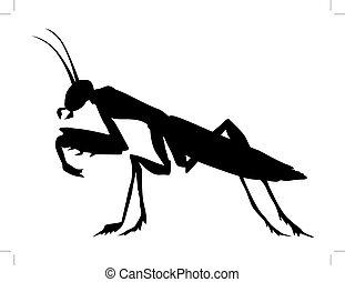 mantis - silhouette of mantis