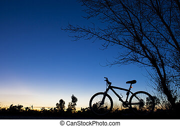 Silhouette of Mountain bike at sunset nder tree on blue sky