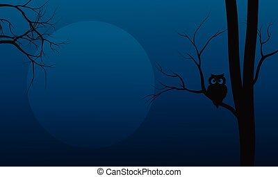 Silhouette of owl in tree Halloween