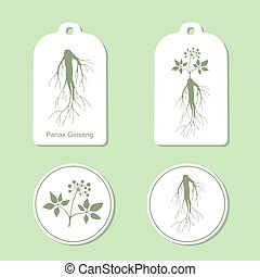 Silhouette of panax ginseng with leaves and root. Vector  Illustration. Health and Nature Set of Tags and Labels