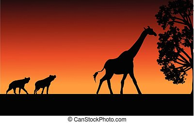 Silhouette of panther and giraffe