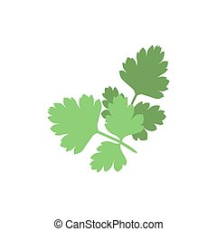 Silhouette of parsley on a white background. Vector icon isolated