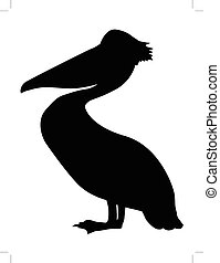 silhouette of pelican
