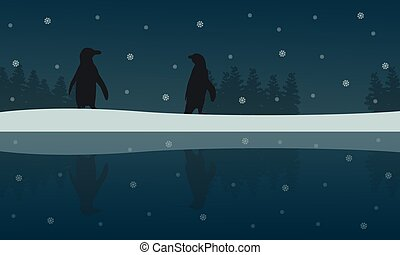 Silhouette of penguin with reflection scenery