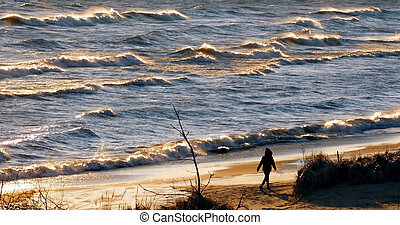 Silhouette Of Person On The Beach