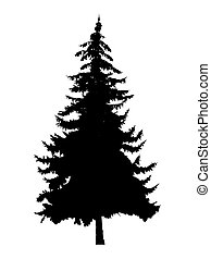 Silhouette of pine tree
