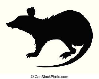 silhouette of rat