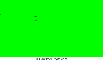 Silhouette of ravens flock fly from left to right. Green...
