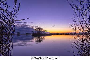 Silhouette of Reed at serene Lake during Purple Sunset