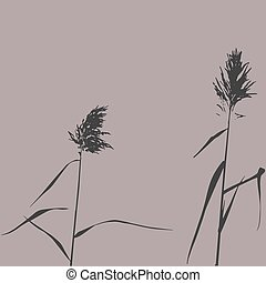 Silhouette of Reed Bush. Vector Illustration