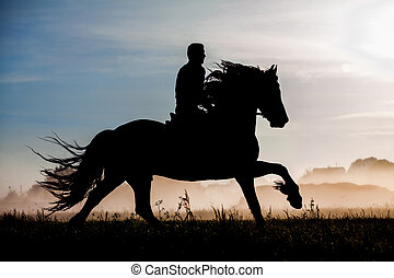Silhouette of rider and horse in sunset background.