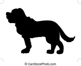 saint bernard dog - silhouette of saint bernard dog