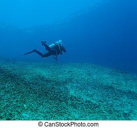 Silhouette of Scuba Diver near Sea Bottom - Silhouette of...