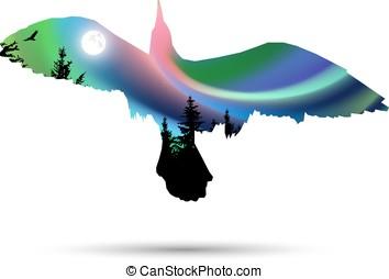 Silhouette of sea gull