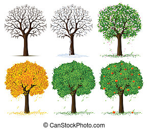 silhouette of autumn, spring, summer and winter season tree isolated on the white background