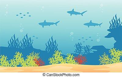 Silhouette of shark background on underwater