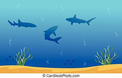 Silhouette of shark on ocean landscape