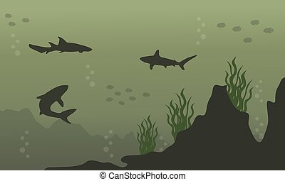 Silhouette of shark on underwater landscape