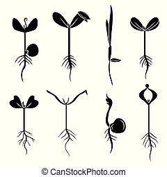 Silhouette of sprouts set